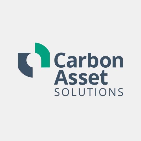 Carbon Asset (1)